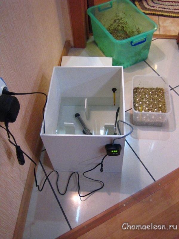 Как сделать инкубатор из коробки самый легкий способ
